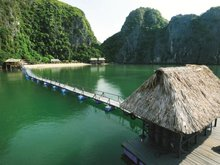 Cat Ba Sandy Beach Resort