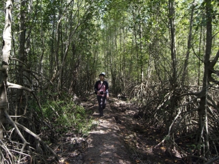 Can Gio Mangrove Forest - Monkey Island Tour 1 Day