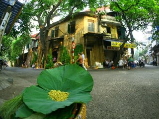 Hanoi City Tour  (B, L)